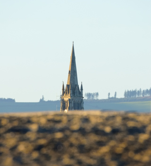 The Saint Saviour's Church steeple as seen from Arklow's South Beach...