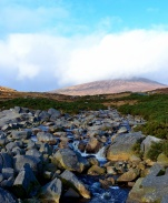 Looking uphill. The Wicklow Gap shows off her chalms!
