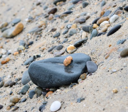 No... I didn't pose the pebble... Ma Nature placed it there!!