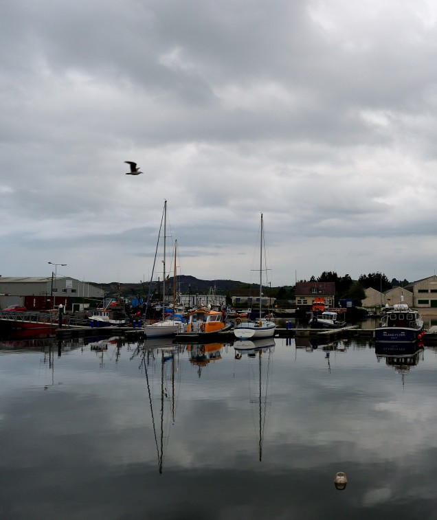 Classic stillness... Arklow Harbour reflections...