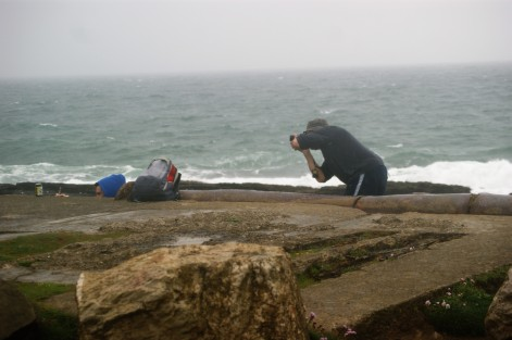 What's going on out there in the rain? The GLW gets me snapping away! Hook Peninsula, Co Wexford