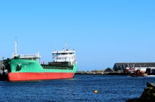 Happy day - Arklow Fortune... at home on 03 May 2017