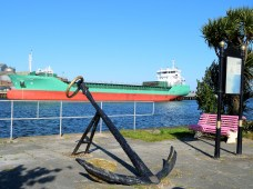 Arklow Fortune... at home on 03 May 2017