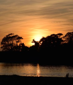Memories of an African sunset? Yep... this photo, taken along the Malahide Estuary, reminded me of days long gone!