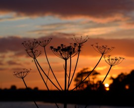 Special sunsets... to be enjoyed and written about!