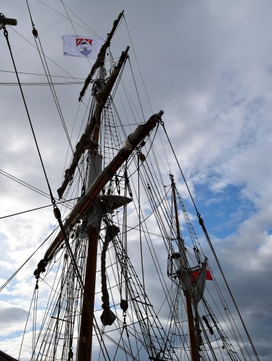 Tall ships need tall trees for tall masts! The Earl of Pembroke sporting the Arklow flag!