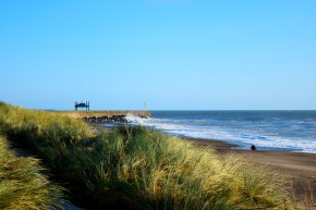 The morning after... Arklow's South Beach in the sunshine. Ophelia who?? 1
