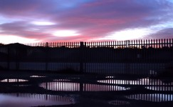 Sunset fence...