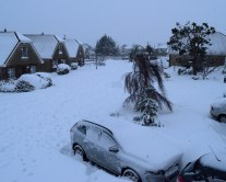 Snow... so much snow!!! Our estate, Arklow, 18h00 02 MAR 2018 - phew, where did it come from??? The Beast and Emma paired... some baby!