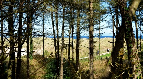 Sea... sand, trees... and bliss! The Raven, Co Wexford!