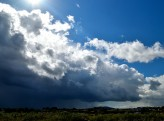 There's a storm brewing! Wehad some great rain showers during the night of 27 Jul and the day 28 Jul 2018... much needed rain to be grateful for!!