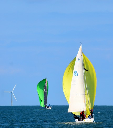 Autumn sailing in Arklow Bay - yellow and green