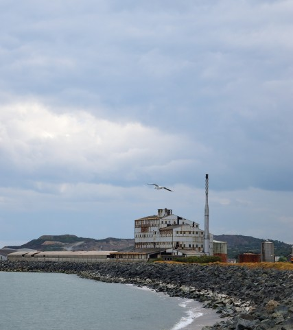 Arklow's Willy Wonker factory... decay is getting to it!