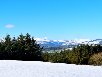 The sun shines... the Wicklow winter wonderland - 02 FEB 2019