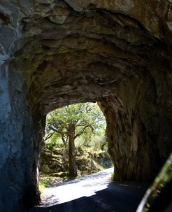 Tunnel vision... somewhere along the Ring of Kerry... southbound on the eastern leg...